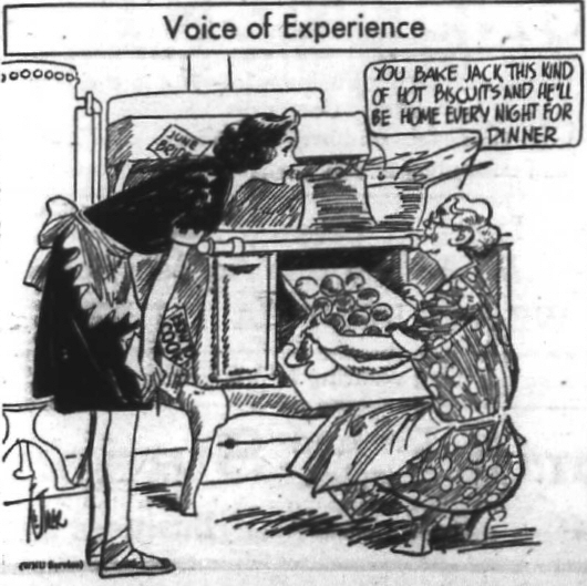 Voice of Experience cartoon