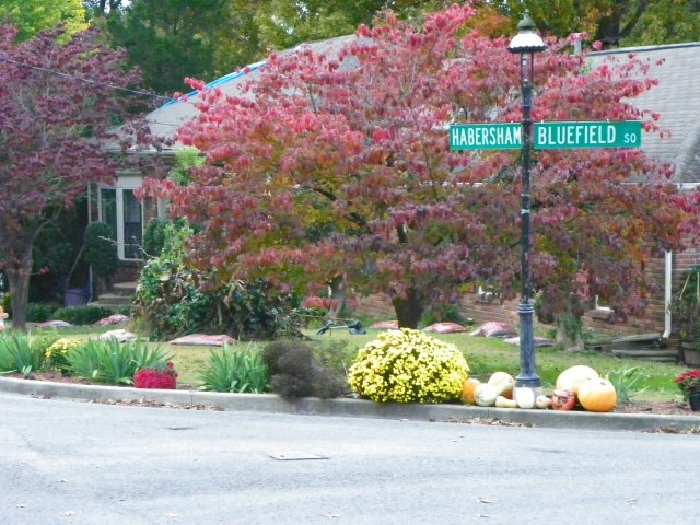 Habersham Bluefield Square Common Area - Historic Bluefields